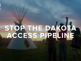 Call the President: Protect Water Protectors at Standing Rock