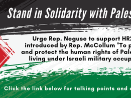 Stand in Solidarity with Palestine