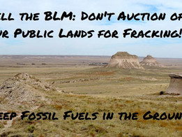 Stand Against Auction of Public Land for Fracking! December 8th