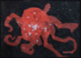 Céphalopode 10 50X70