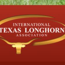 International texas longhorn association