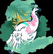 oiseau tropical