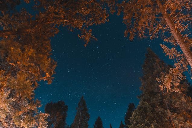 Stars overlooking Yosemite