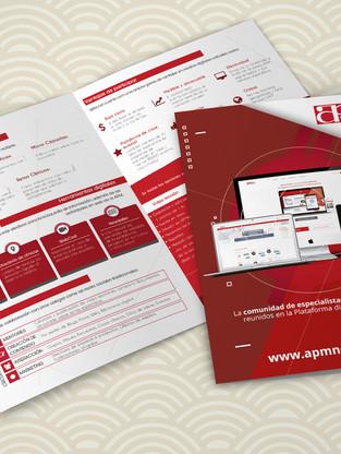 Print-Brochure