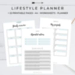 Lifestyle Planner