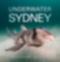 Underwater Sydney_title small.jpg