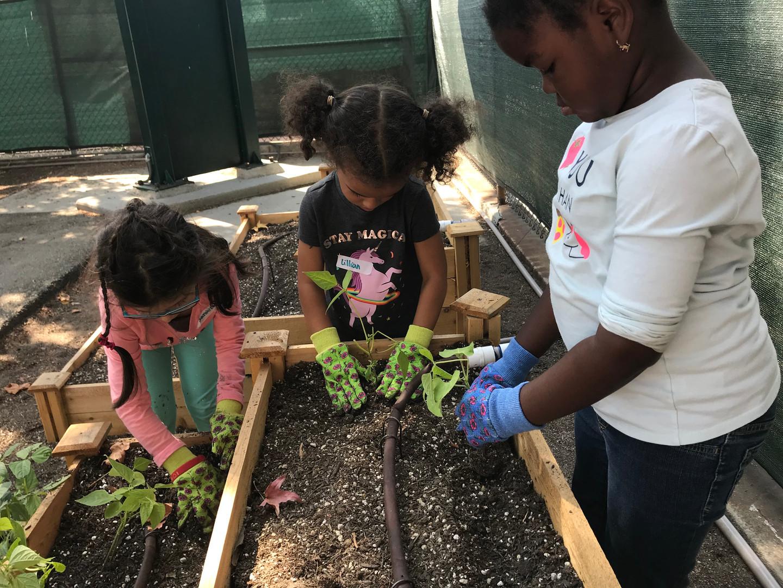 pasadena charter schools tk garden program