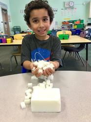 pasadena elementary charter schools