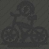 elektrikli bisiklet.png