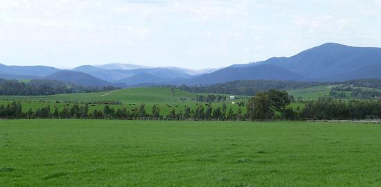 Yarra Valley views