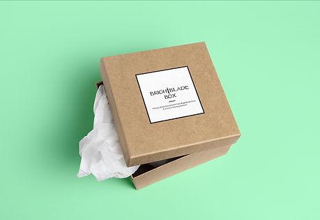 Brightblade Box Mockup.jpg