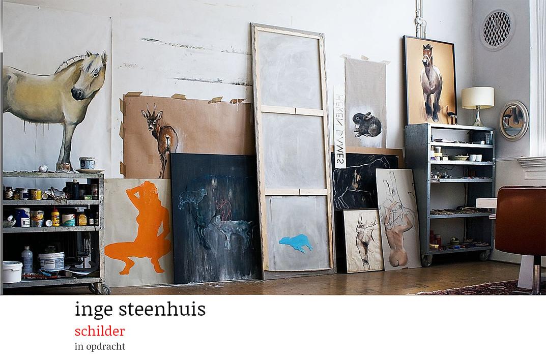 www.steenhuis.info