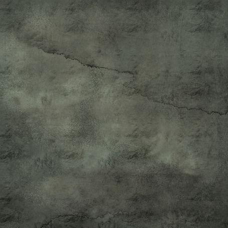 MuddyFoil_Lichen.jpg