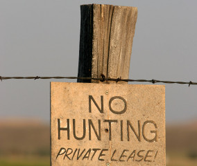 Deer Hunting Lease or Outfitter?