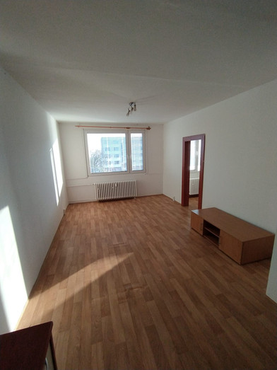 Pronájem bytu, Čížkovice