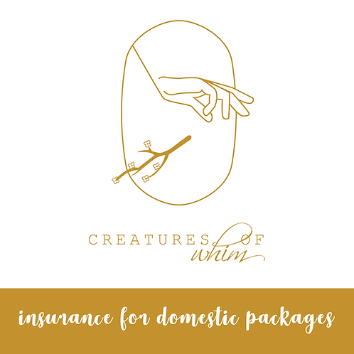 Insurance for Domestic Packages