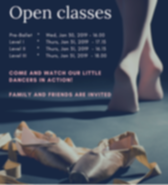 Open classes 2019 - IBSChool TLV_edited.
