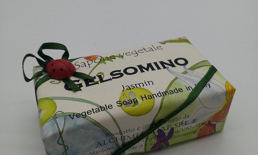 GELSOMINO - JASMIN