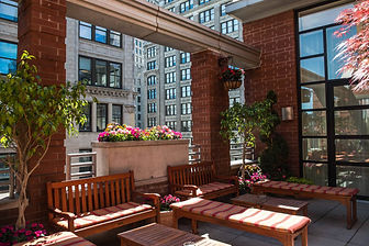 LIBRARY-COLLECTION-HOTELS-NYC-GIRAFFE-MA