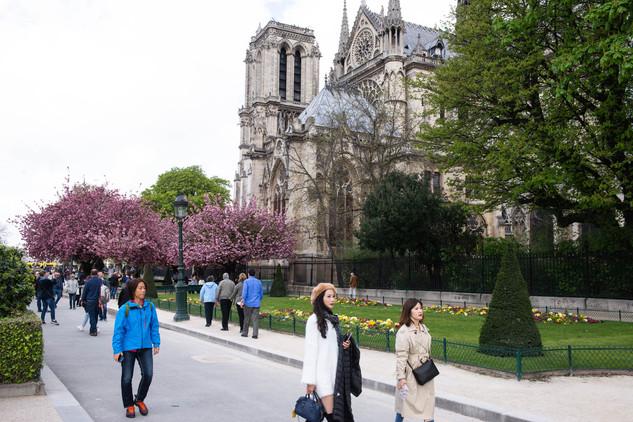 Cathédrale Notré-Dame - Metro Cité