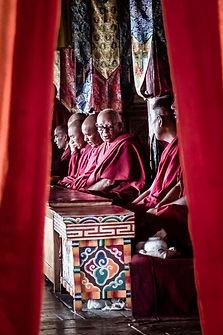 India - Thomas James Parrish