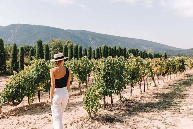 VIND winery