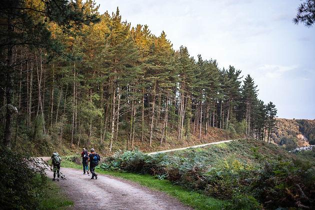 Thomas-Parrish-Camino-Trail-8.jpg