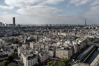 Paris rooftops from Notre Dame