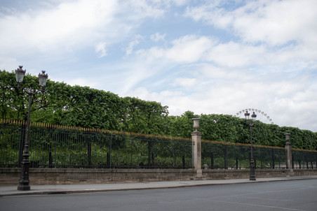 Rue de Rivoli - Metro Tuileries or Concorde