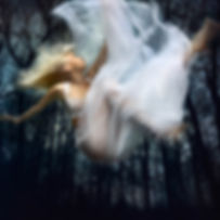 Falling Through Time by Barbara Cole