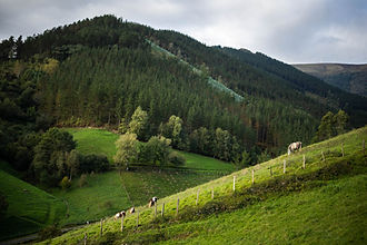 Thomas-Parrish-Camino-Trail-9.jpg
