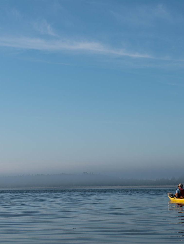 Kayak McNabs Island