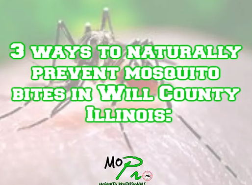 3 natural ways to stop the bite...From mosqiotos this season in Will County.