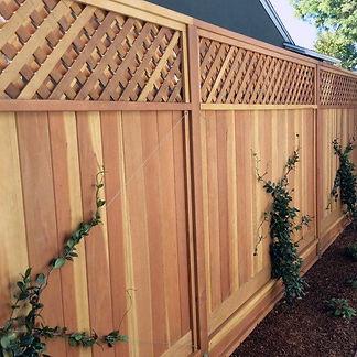 fence-2.jpg