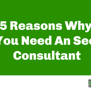 5 Reasons Why You Need An Seo Consultant