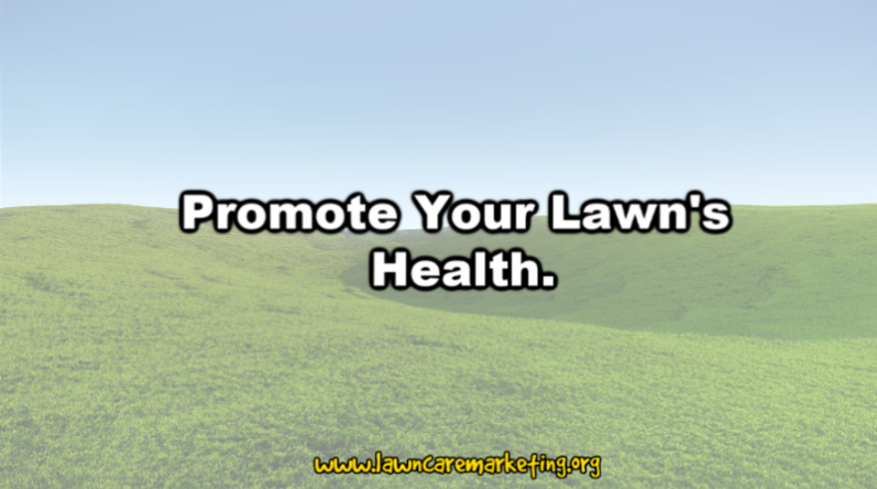 Promote Your Lawn's Health