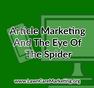 Article Marketing And The Eye Of The Spider