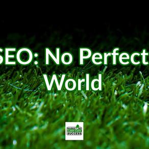 SEO: No Perfect World