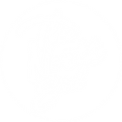 TNE logo_White.png