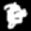 TNE logo WHITE-01.png