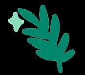 leaf%20icon_edited.png