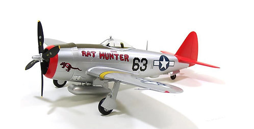 P-47D Rat Hunter - 1/48