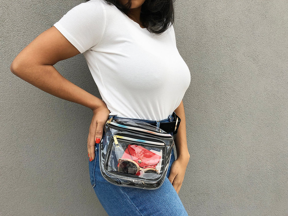 31d0f9f285fe clearlee fanny pack