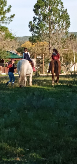 caballo2+