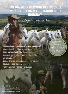 folleto para imprimir.png