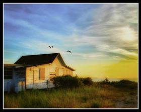 The Last Cottage, #2