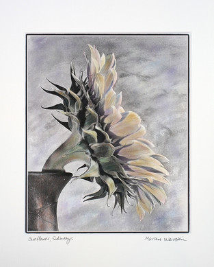 Sunflower, Sideways (SOLD)