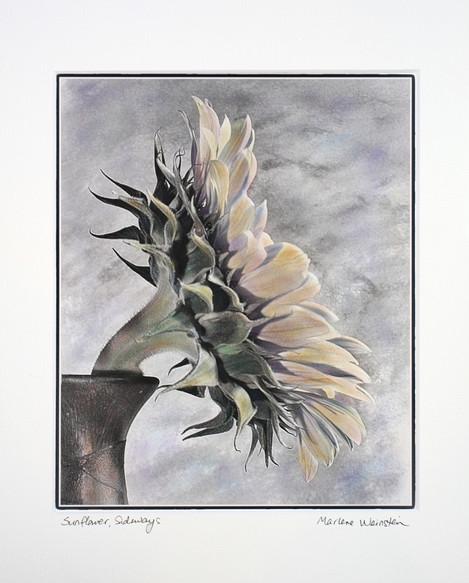 Sunflower, Sideways (SOLD)