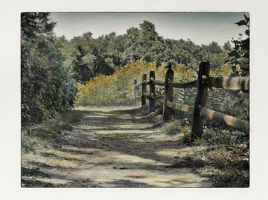 Wildflower Trail, Avalon (SOLD)