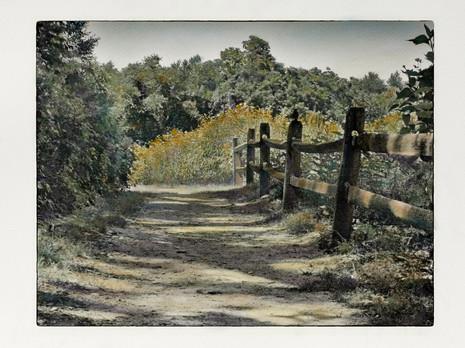 Wildflower Trail, Avalon (SOLD)